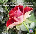 Finding_Partner_ofyour_Dreams